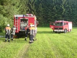 Rauchentwicklung in einem Waldgebiet bei Rothenkreuz am 17.06.2010